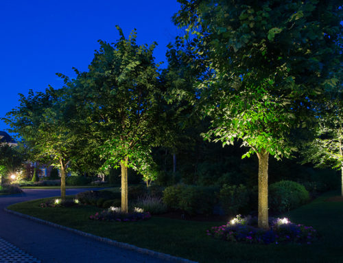 Outdoor Landscape Lighting Designs That Will Change the Way You See